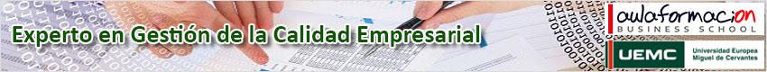 experto-calidad-empresarial-banner