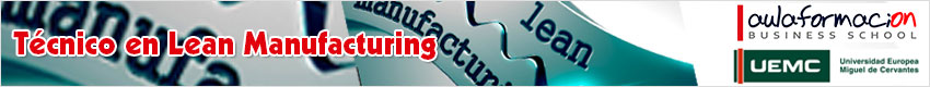 tecnico-lean-manufacturing
