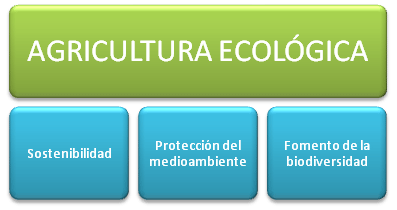 agricultura-ecologica-objetivos