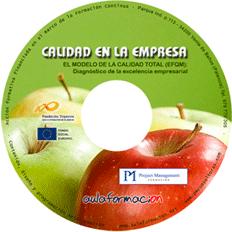 curso-el-modelo-europeo-efqm-cd