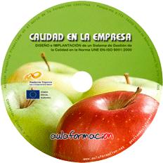 curso-iso-9001-gestion-calidad-cd