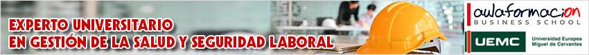 experto-universitario-gestion-salud-seguridad-laboral