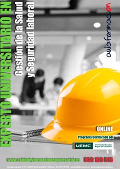 programa experto-universitario-salud-seguridad-laboral