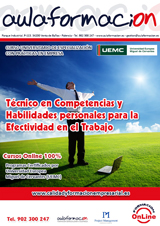 programa-tecnico-competencias-y-habilidades-personales-para-la-efectividad-en-el-trabajo