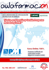 programa Direccion_y_Gestion_de_Proyectos_Metodologia_PMI