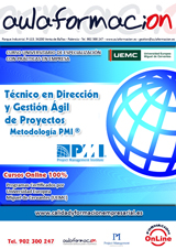 tecnico-direccion-y-gestion-agil-de-proyectos-metodologia-pmi-programa