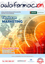 cursos-con-practicas-en-empresas-tecnico en marketing