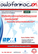programa-tecnico-superior-project-management-pmi