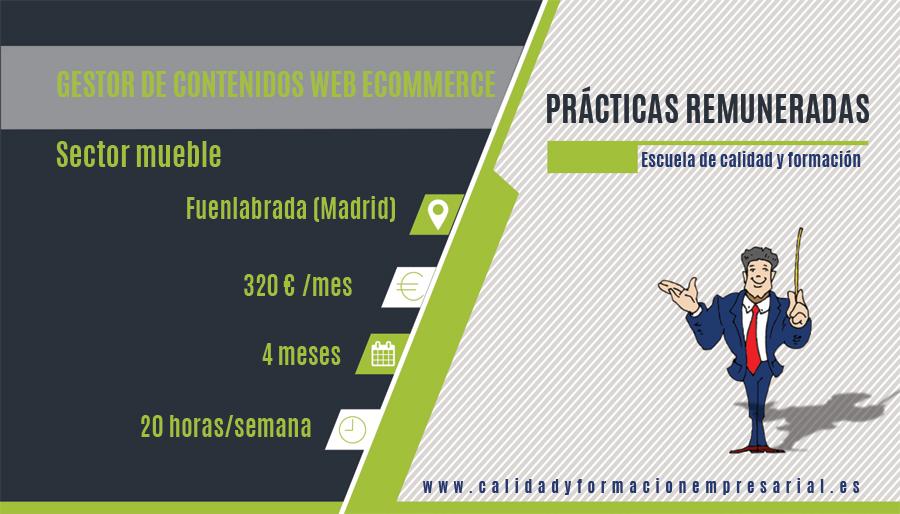 PRACTICA REMUNERADA GESTOR DE CONTENIDOS WEB ECOMMERCE - FUENLABRADA- MADRID